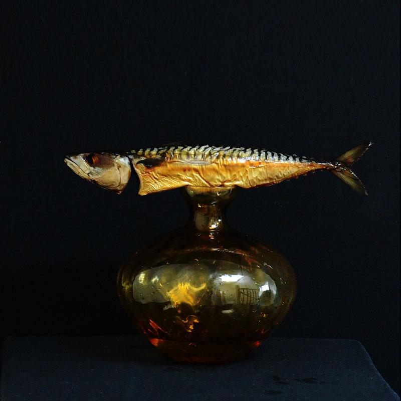 Portrait - Mackerel
