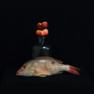Portrait - Redsnapper