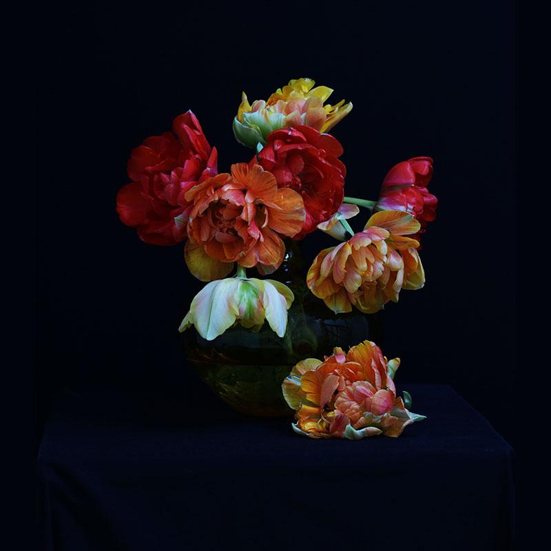 Portrait - Tulips